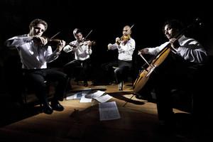 quartettodicremona-photo-by-christina-daysog-900x600